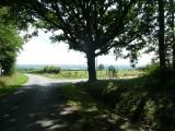 fietsen in de directe omgeving